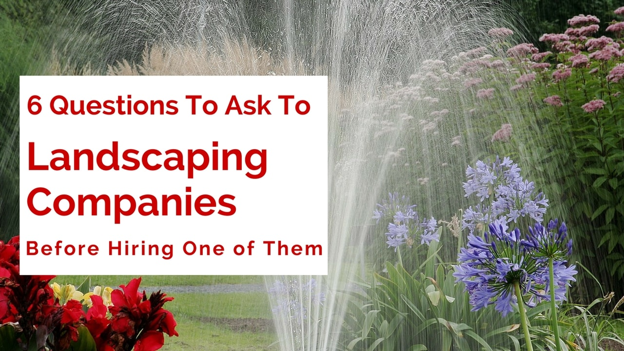 SIX Most Important Questions To Ask Before Hiring A Landscaping Company